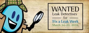 2016 Fix a leak week